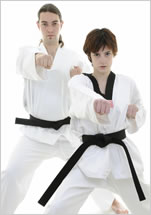 Pro Martial Arts Franchise Opportunities (Click Here)